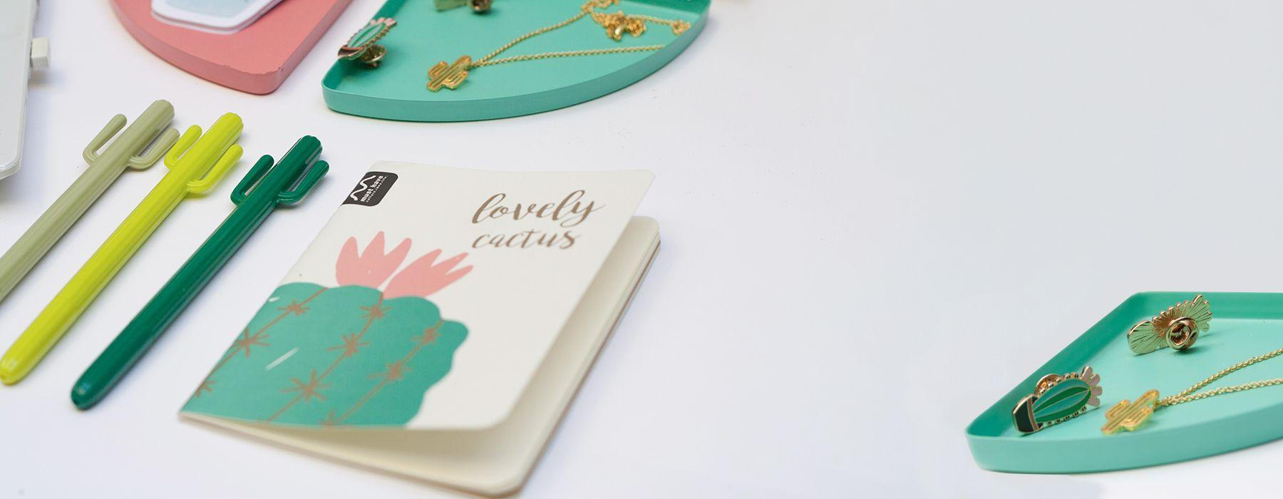 Kit de regalo cactus